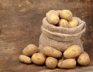Potato-lead