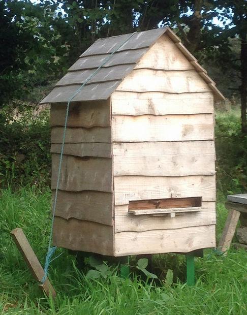 bee hive 16