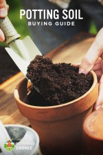 Best Potting Soil for Any Plant – Buying Guide and Recommendation