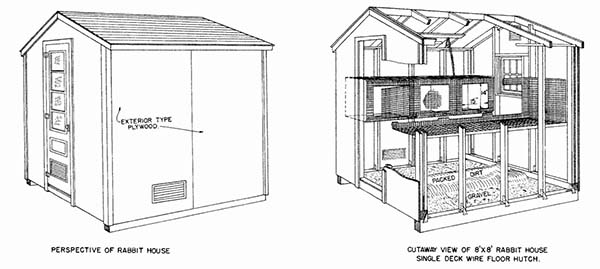 5 rabbit housing plans