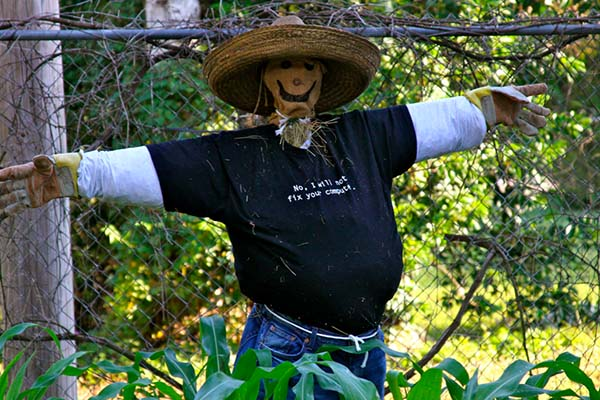 How to make Scarecrow