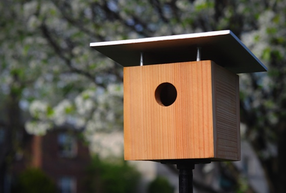 this little birdhouse is indeed a classic being able to build your own birdhouse is a classic family idea as well - Birdhouse Design Ideas