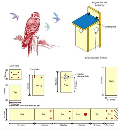 birdhouse-book-pdf