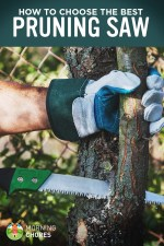 10 Best Pruning Saw for Trees (Hand & Pole Saw) – Reviews & Buying Guide