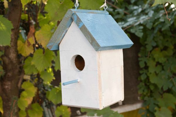 53 diy bird house plans that will attract them to your garden