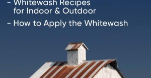 Whitewashing: The Benefits, Recipes, How to Paint, and Everything Else You Need to Know
