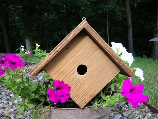 53 diy bird house plans that will attract them to your garden for Song bird house plans