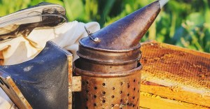 15 Essential Beekeeping Equipment Every Beekeeper Can't Live Without