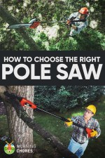 7 Best Pole Saw Pruner (Electric, Cordless, & Gas) Reviews for 2017