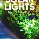 8 Best Brightest Solar Lights For Garden Outdoor Product Reviews