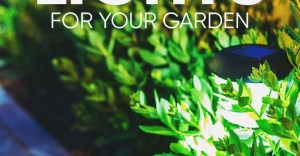 8 Best & Brightest Solar Lights for Garden & Outdoor: Product Reviews