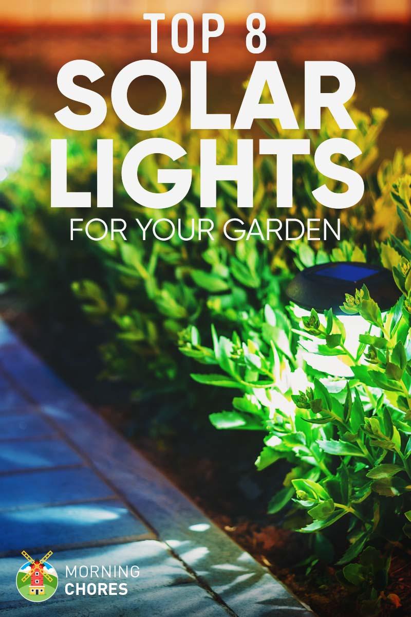 8 Best & Brightest Solar Lights for Garden & Outdoor: 2017 Reviews
