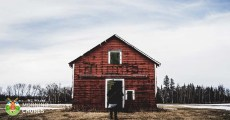 10 Tips on How to Purchase Your First Homestead the Right Way