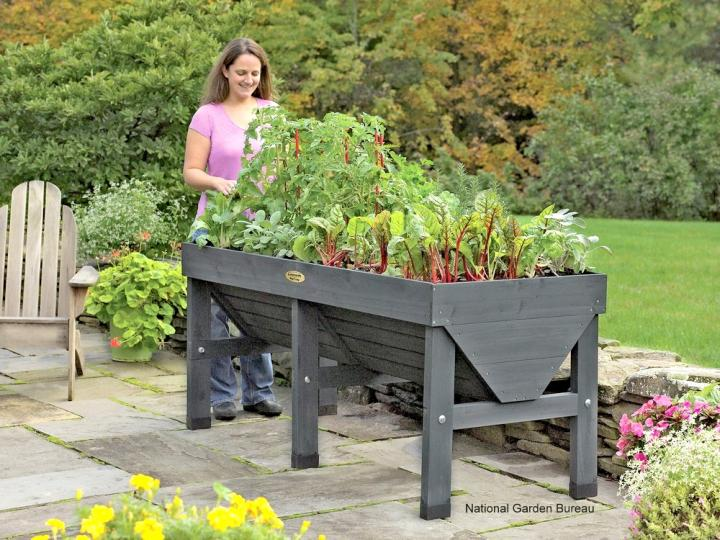 Exceptional What Is Container Gardening?