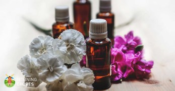 How to Make Essential Oils: 2 Ancient Methods That Work Every Time
