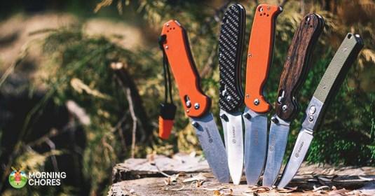 6 Best Pocket Knife Reviews: The Latest on Super Sharp Pocket Knives