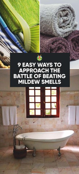 9-Easy-Ways-to-Approach-the-Battle-of-Beating-Mildew-Smells -PIN.jpg?resize=273,600&ssl=1