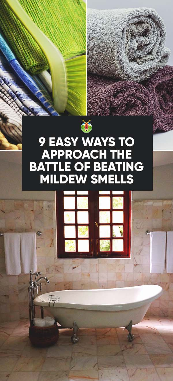 9 Easy Ways To Approach The Battle Of Beating Mildew Smells  PIN?resizeu003d273,600u0026sslu003d1