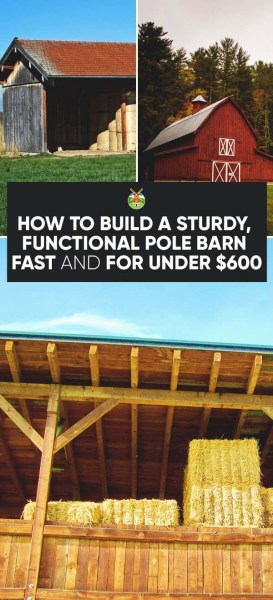How to build a sturdy functional pole barn fast and for for How to construct a pole barn