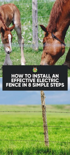 How To Install An Effective Electric Fence In 8 Simple Steps
