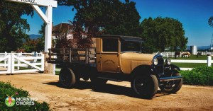 7 Helpful Farm Utility Vehicles That Will Make Your Life a Breeze