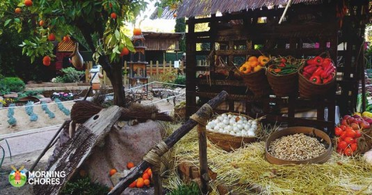 8 Steps to Start a Successful CSA as a Homesteader