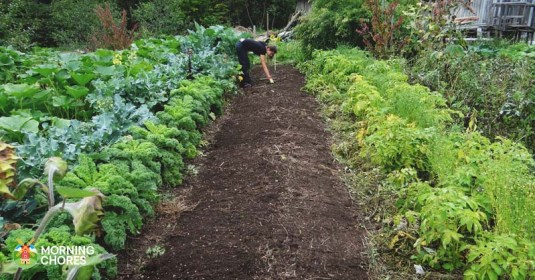 9 Homesteading Shortcuts to Make the Simple Life Even Easier