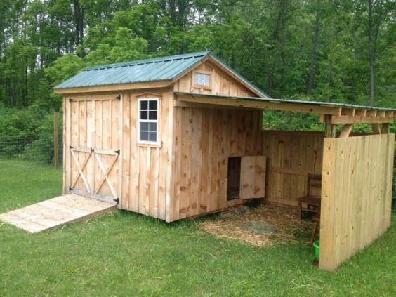 Goat shelter - photo#36