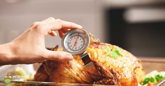 6 Best Meat Thermometer Reviews: Essential For Perfectly Cooked Meat