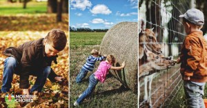 Kids on the Homestead: 57 Age Appropriate Chores to Keep Everyone Busy