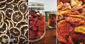 47 Perfectly Delicious Dehydrator Recipes You Will Want to Try