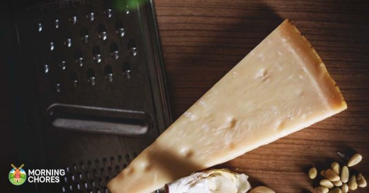 5 Best Cheese Grater Reviews: Fascinating Clever Food Prep Gadgets
