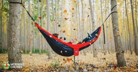 6 Best Hammock Reviews: Relaxing in the Most Comfortable Hammock