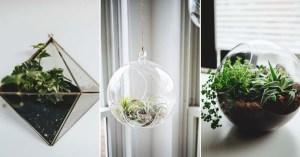 25 Inspiring Homemade DIY Terrarium Ideas You Can Make Today