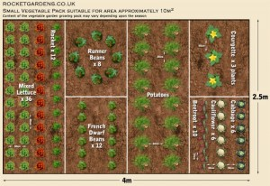 19 Vegetable Garden Plans & Layout Ideas That Will Inspire You