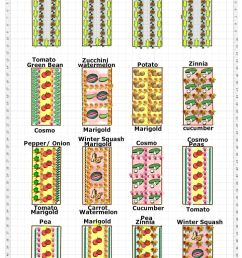 the multi bed garden plan [ 729 x 1117 Pixel ]
