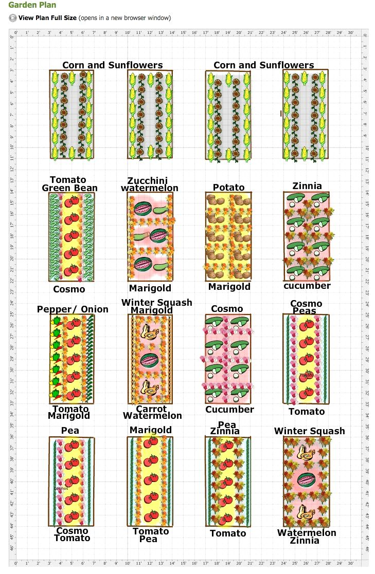 medium resolution of the multi bed garden plan