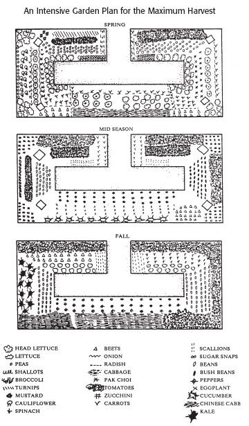 19 Vegetable Garden Plans & Layout Ideas That Will Inspire