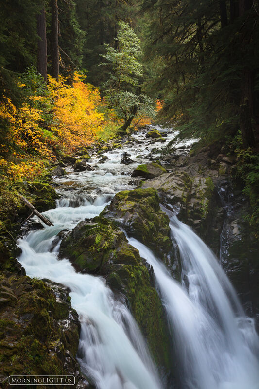 Facebook Wallpaper Fall Colors Sol Duc Falls Autumn Olympic National Park Washington