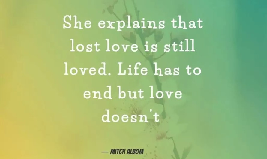 Best Lovely Heart Touching Quotes in Hindi [FREE]