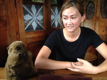 Beaver in the hut
