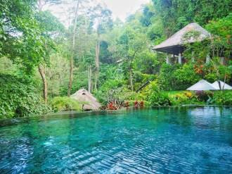 Maya Resort Ubud ║Morning Sophie