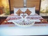 Griya Hotel Amed ║ Morning Sophie