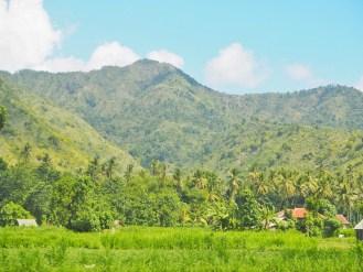 Amen Bali