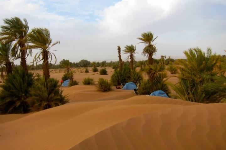 Desert Camp4