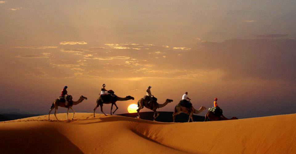 camel sunset erg chigaga