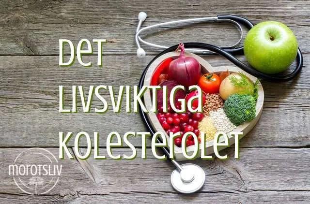 Kolesterol – på gott eller ont?