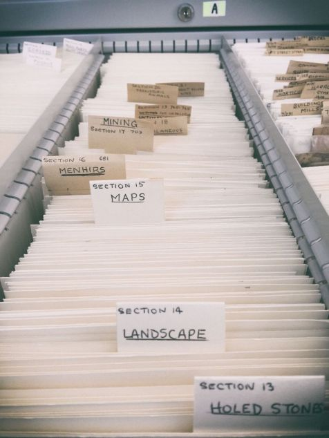 Rows of glass negatives