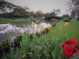 www.morrisophotography.co.uk/flowersandplants