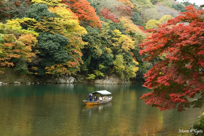 D2 嵐山 (2)